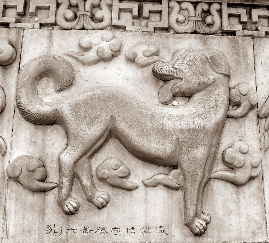 dog 279650 1280 - 2018 is the year of the Dog in Chinese Astrology